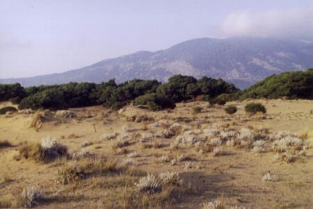 Fig. 9 Investigation area, western coast of Peloponnese